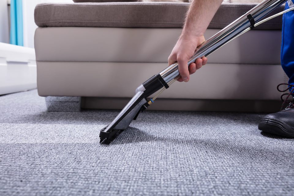 Prevent Mites Infestation Hiring a Professional Carpet Cleaning Park City